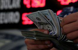 Dolar Fonu Nedir?